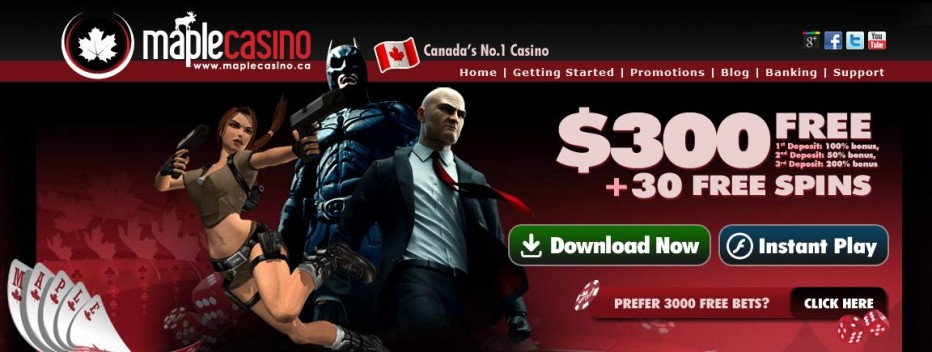 Free Play 3000$ Maple Casino