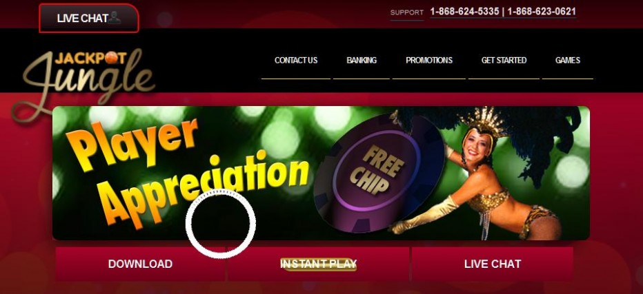 Бездепозитный бонус 10$ Jackpot Jungle Casino